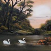 Swans At Dusk.for Sale Art Print