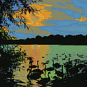 Swans At Sunset Art Print