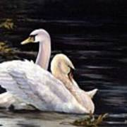 Swansong Art Print