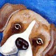 Sweet Boxer Portrait Art Print