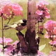 Sweet Chickadee Art Print