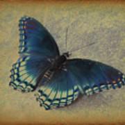 Sweet Flutterby Art Print