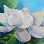 Sweet Magnolia Print by Bobbi Price