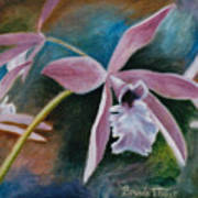 Sweet Orchid Art Print