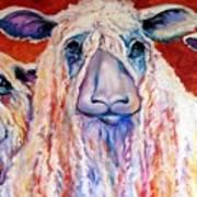 Sweet Wensleydales Sheep By M Baldwin Print by Marcia Baldwin