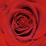 Swirling Red Silk Art Print