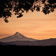 Mt. Hood At Sunset Art Print