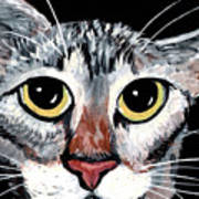 Tabby Eyes Art Print