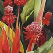 Tahiti Red Art Print