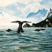 Tailing Whales Prince William Sound Art Print