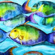 Take Care Of The Fish Art Print