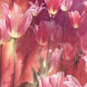 Tall Tulips Art Print