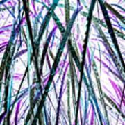 Tall Wet Grass Art Print