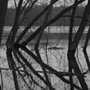 Tangled Reflections Art Print