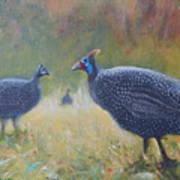 Tarantale - Guinea Fowl Art Print