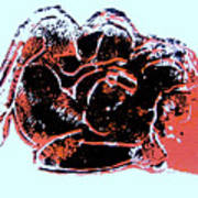 Tarbaby 4 Art Print by Adam Kissel