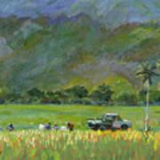 Taro Pickers Art Print