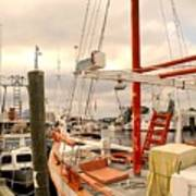 Tarpon Springs Harbor Art Print