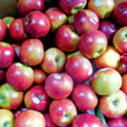 Tasty Fresh Apples 1 Art Print