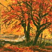 Taughannock Park Trumansburg New York Art Print