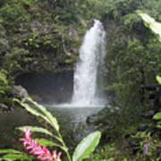 Taveuni, Tavoro Waterfall Art Print
