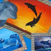 Taylors Dolphins Art Print