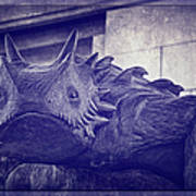 Tcu Horned Frog Purple Art Print