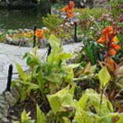 Tea Garden At San Antonio Zoo Crosswalk Art Print