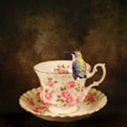 Tea Time With A Hummingbird Art Print