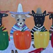 Teacup Chihuahuas In Mexico Art Print