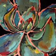 Teal Pink Succulent Art Print