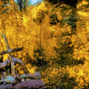 Telluride Spirituality - Colorado - Autumn Aspens Art Print