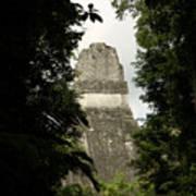 Temple In The Trees Tikal Guatemala Art Print
