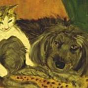 Terrier Mix And Feline Friend Art Print