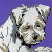 Terrier Mix Art Print