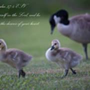 Psalm 37 Art Print