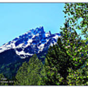 Teton Picture Perfect Art Print