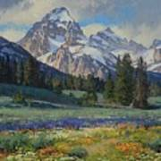 Teton Splendor Art Print