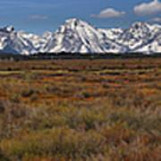 Teton Willow Flats Panorama Art Print