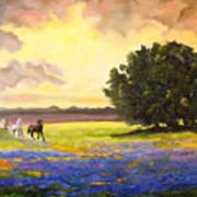Texas Horses And Bluebonnets Print by Connie Tom