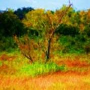 Texas Landscape 102310 Art Print