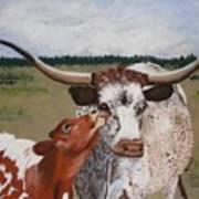 Texas Love Art Print