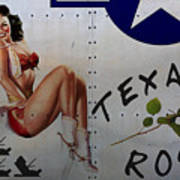 Texas Rose Noseart Art Print