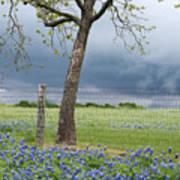 Texas Spring Storm Art Print