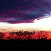 Texas Sunset Art Print