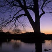 Texas Sunset On The Lake Art Print