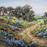 Texas Trail  Art Print