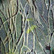 Texture Study One   Entanglement Art Print