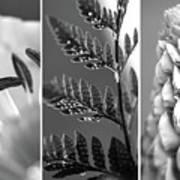 Texture Triptych Art Print