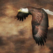 Textured Eagle 2 Art Print